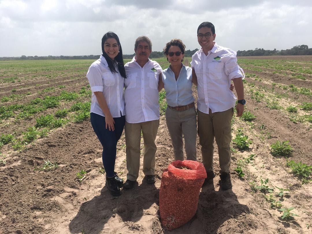 Una siembra de maní por el futuro del país: Alimentos Masacua reactiva la producción en el estado Monagas