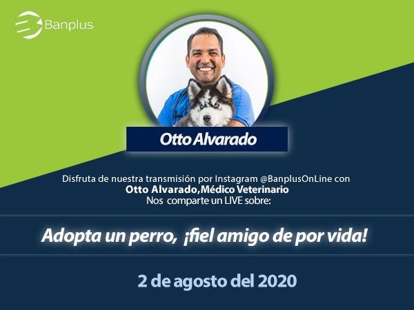 Banplus, junto al Dr. Otto Alvarado, promueve las bondades de adoptar mascotas