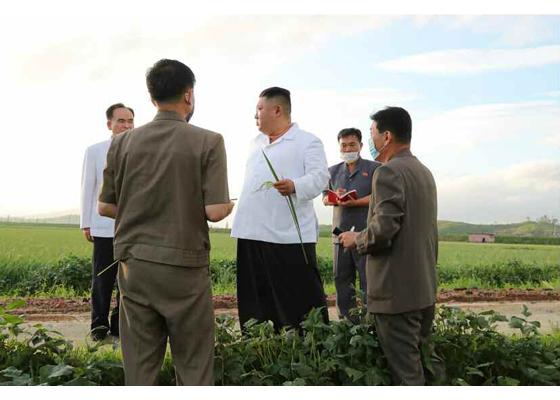 Máximo Dirigente Kim Jong Un recorre la provincia de Hwanghae del Sur atacada por el tifón