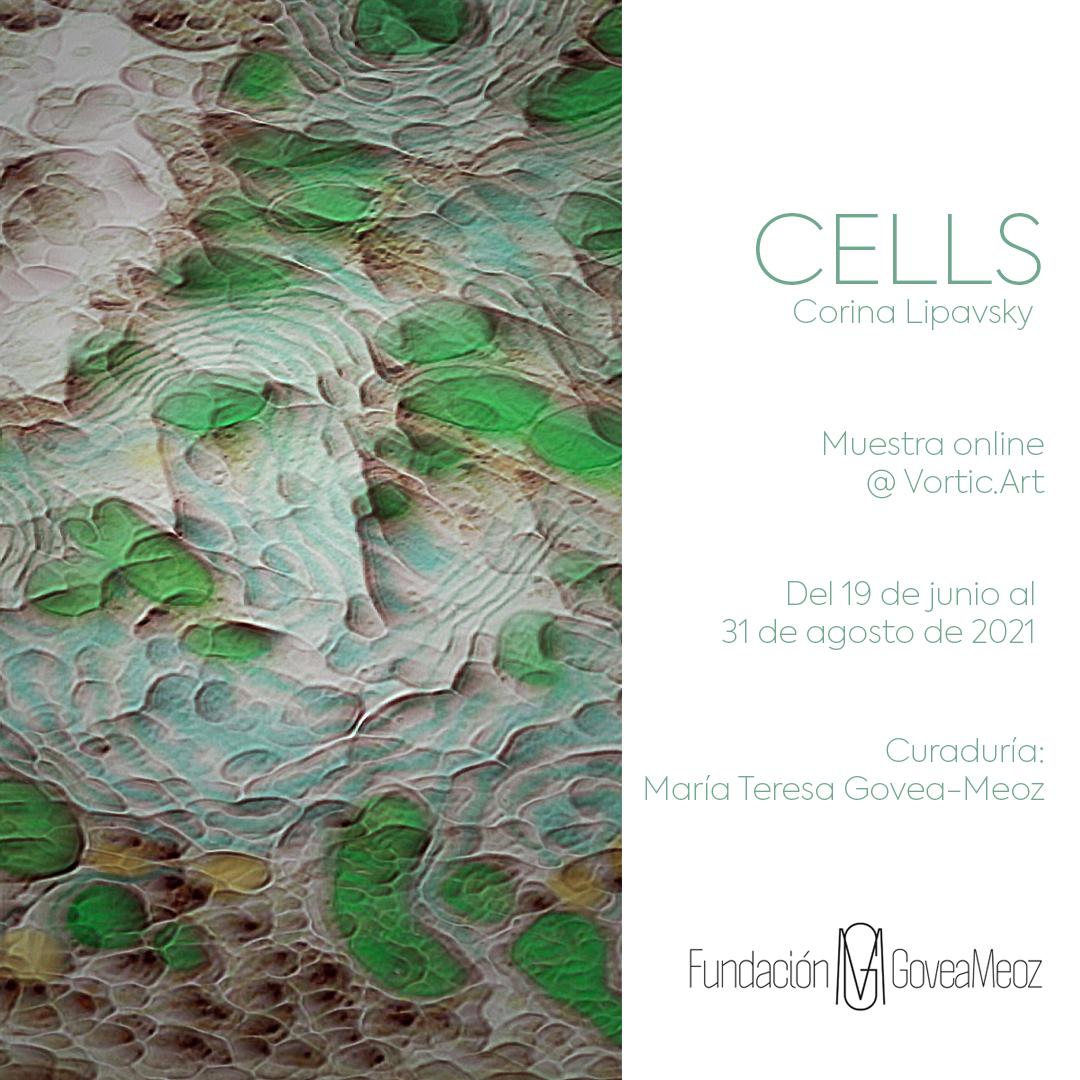 CELLS   CORINA LIPAVSKY Exposición que presenta la FUNDACION GOVEA MEOZ en la plataforma virtual VORTIC.